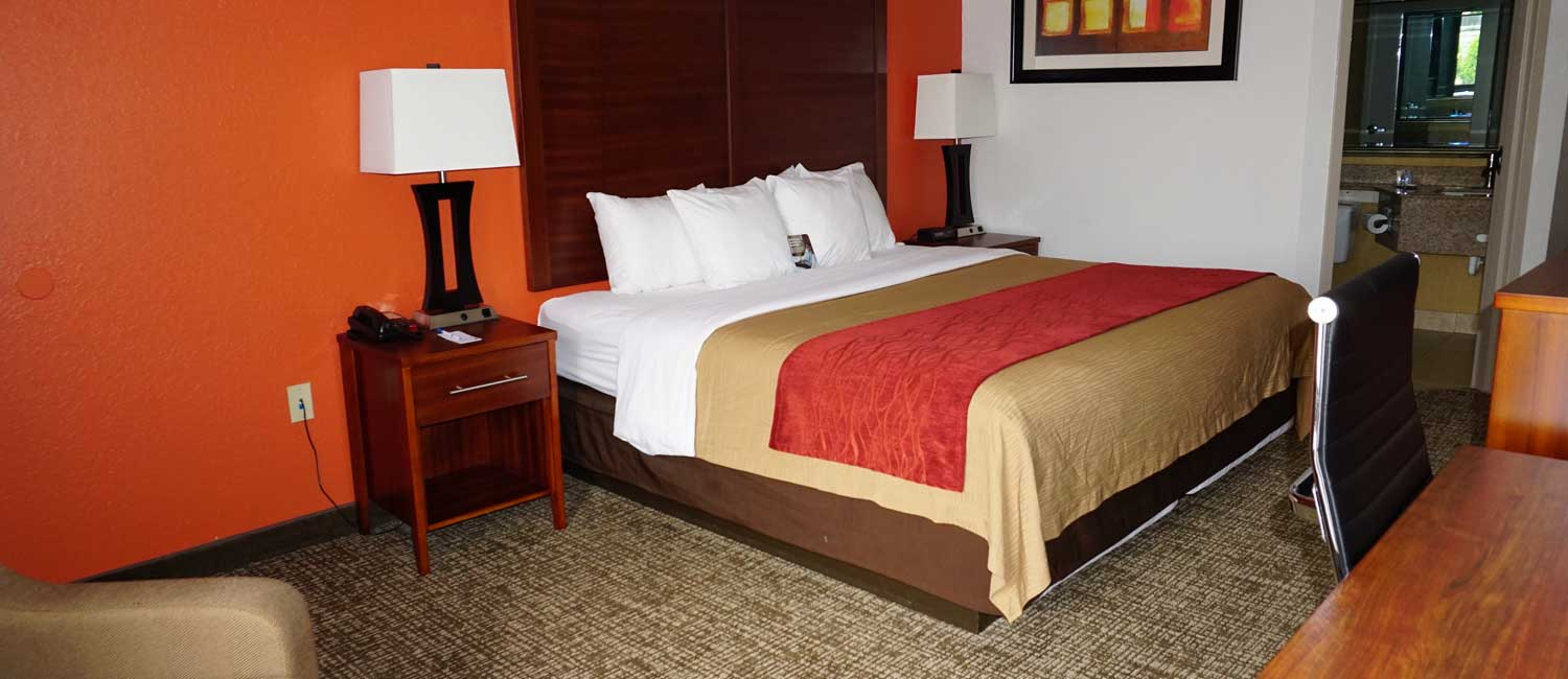Comfortable and Modern Guest Rooms
