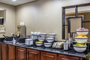 Newly Renovated Comfort Inn - Breakfast